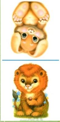 Мои друзья мохнатые зверюшки открытки издательство аст, картинки пошагово