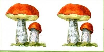 золотое разрезные картинки гриб против железа итоги