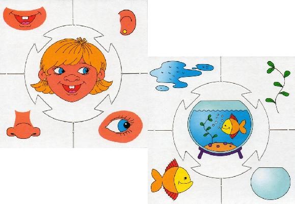 Часть и целое картинки для дошкольников